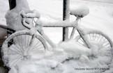 Piano freddo