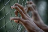 Rapporto sulle carceri
