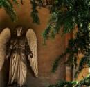 Certosa | Natura e Morte