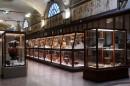 Museo Civico Archeologico (foto Roberto Serra)
