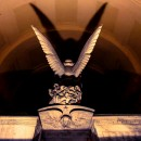 Il teschio e la farfalla   simboli e misteri in Certosa