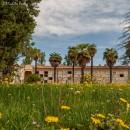 Diverdeinverde in Certosa   Foto Michele Brusa