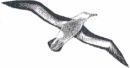ARTE ASCOLTO - logo