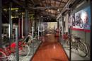 Biciclette a motore e ciclomotori Ducati