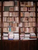 Libreria nella casa bolognese di Spongano in Via Vallescura