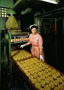 Macchina per la fattura delle tagliatelle, pastificio La Bazzanese, Bologna, 1964
