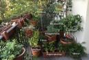 Orti e balconi Borges