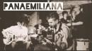 Panaemiliana 1