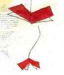 Un libro dentro l'altro