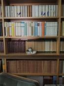 Scaffale della biblioteca di Mario Saccenti nella casa di Viale Aldini