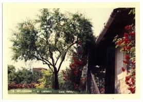 La casa del melograno in via Broccaindosso