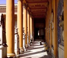 Il Liceo Galvani e la Certosa - caccia ai tesori della Certosa minore