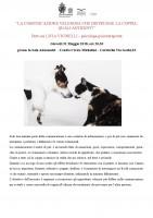 ABSTRACT CONFERENZA: LA COMUNICAZIONE VELENOSA CHE DISTRUGGE LA COPPIA