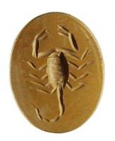 Diaspro giallo con raffigurazione di scorpione