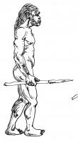 Il Paleolitico: il Homo antecessor