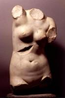 Torso di Afrodite Anadiomene