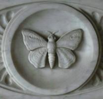 Una delle tante farfalle di marmo che abitano la Certosa