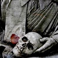 A spasso con Dante nella selva oscura della Certosa