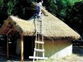 Il tetto viene poi rivestito con mazzetti di canne di palude legati all\'intelaiatura con fibre vegetali.