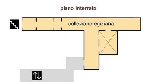 Collezione egiziana sale espositive museo civico for Progettista del piano interrato