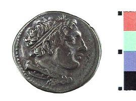 Didracma in argento 'romano-campana'(Fronte)