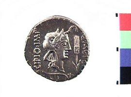 Denario in argento di Eppius e Q. Caecilius Metellus Pius Scipio(Fronte)