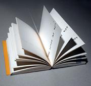 Primo amore. La passione di un collezionista. 100 libri d\'artista dalla raccolta di Paolo Della Grazia